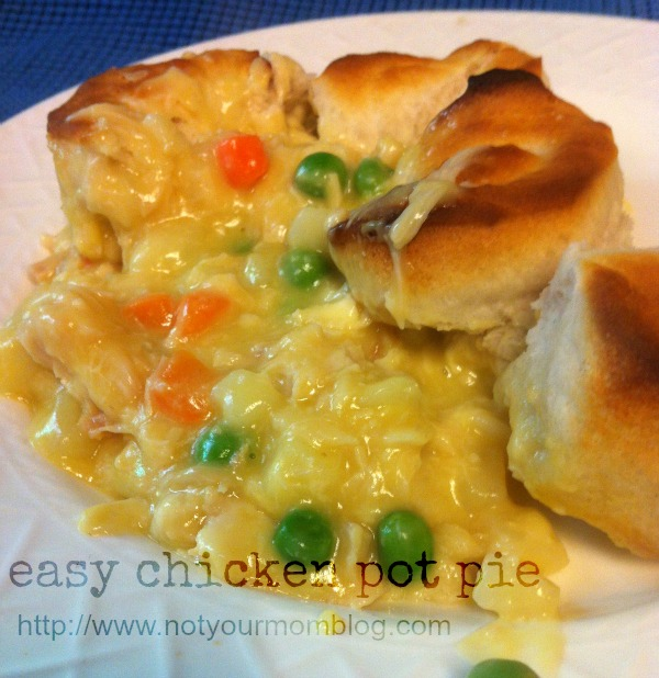 easy chicken pot pie recipe